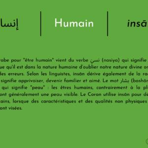 إنسان | Humain | Insān