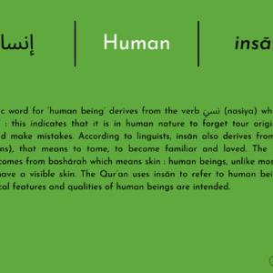 إنسان   Human   Insān