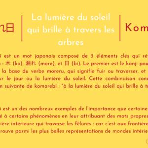 木漏れ日 | The Sunlight Shining Through The Trees | Komorebi
