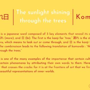 木漏れ日 | La Lumière Du Soleil à Travers Les Arbres | Komorebi